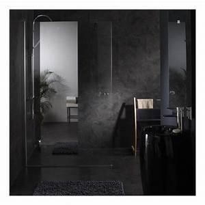 Paroi De Douche Miroir : paroi de douche fixe avec bande effet miroir integre ~ Dailycaller-alerts.com Idées de Décoration