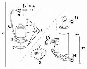 Mercury Trim Tilt Manual