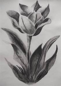 "Abstract ""Flowers"" Charcoal Drawings And Illustrations For ..."