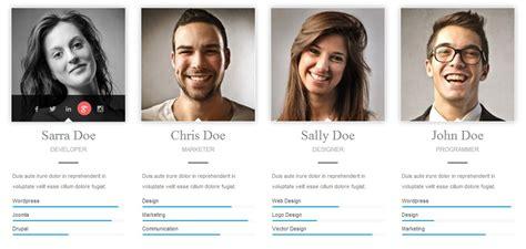 Team Showcase For Visual Composer Wordpress Plugin By