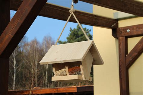 tipps zur winterfuetterung von voegeln nabu