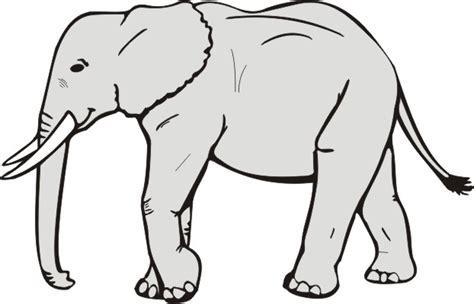 elephant clipart black and white elephant clip black and white clipart panda free