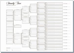 A3 Six Generation Family Tree Chart - Pedigree (pack of 3 ...