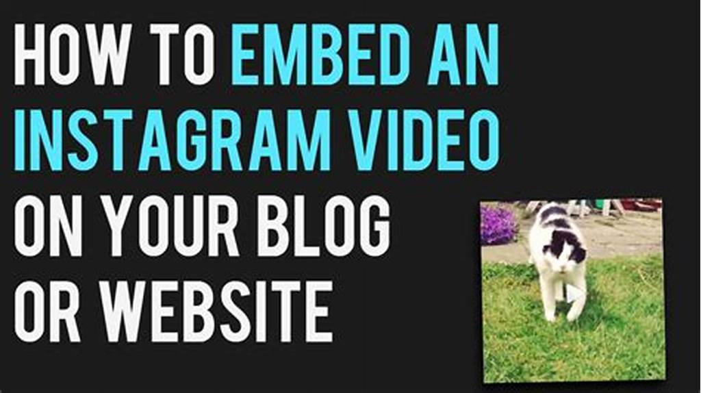 #How #To #Embed #An #Instagram #Video #On #Your #Blog #Or #Site #In #3