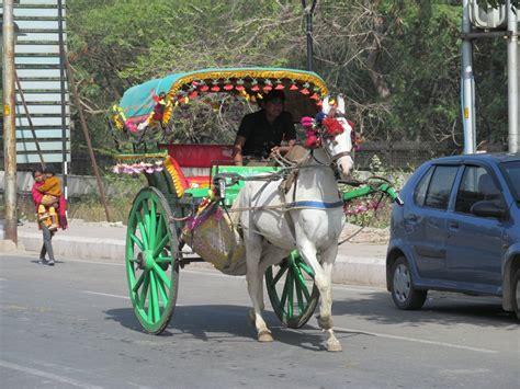 indian cart agra horse cart india travel forum indiamike com