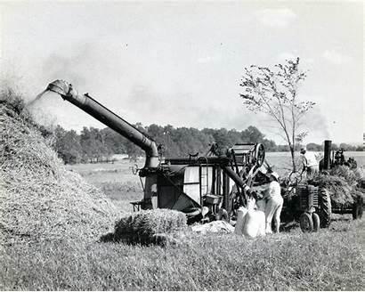 Steam Powered Threshing Machinery Oats Watertown 1940s