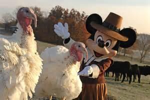 disney world thanksgiving where to eat what do