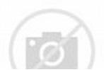 Die Hohe Karlsschule in Stuttgart zur Zeit Friedrich ...