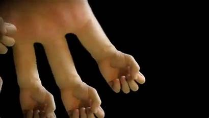 Hands Fingers Pair Makeagif Robotic Control Point