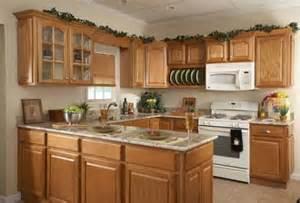 kitchen pantry cabinet design ideas pantry cupboard designs kitchenidease