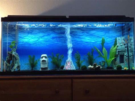 gallon glass aquarium fish tank themes glass