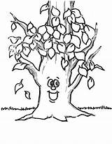 Coloring Tree Pages Leaves Printable Fall Sheet sketch template