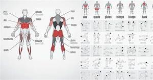 Daily 28 Days No Gym Total Body Workout Plan