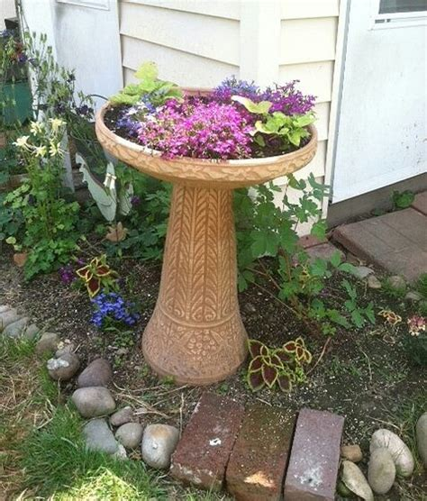 bird bath planter gardening ideas