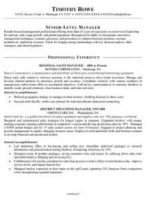 sle resume insurance account executive positions medical sales management resume