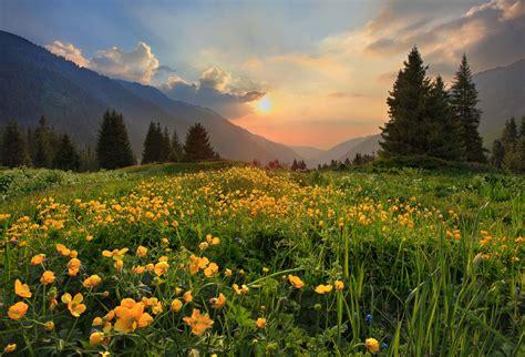 home wwwsecond naturecom