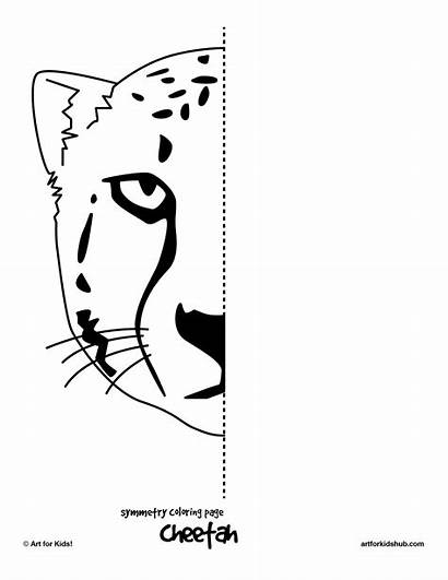 Symmetry Pages Worksheets Printable Cheetah Symmetrical Drawing