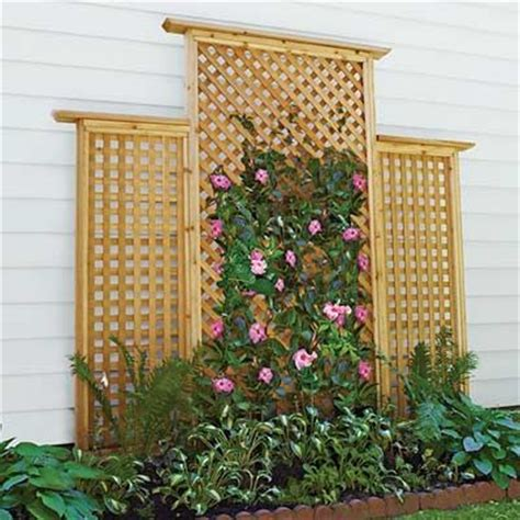 25 best ideas about lattice wall on trellis
