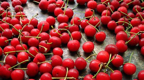 Image Of Ice Cream Warm Fresh Cherries The Splendid Table