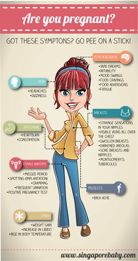 Pregnancy Symptoms. Early Signs of Pregnancy Infographic