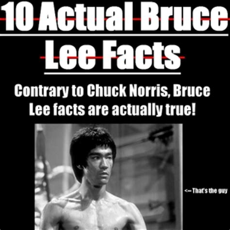 Bruce Lee Memes - pics for gt bruce lee birthday meme