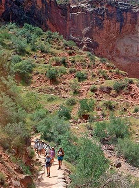 guided tours grand canyon national park  national