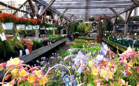 chelsea garden center the 10 best plant shops in nyc 6sqft