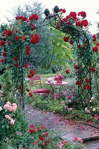 Rosen Für Rosenbogen : rosenbogen mit kletterrosen ein genuss f rs auge und die seele ~ Orissabook.com Haus und Dekorationen