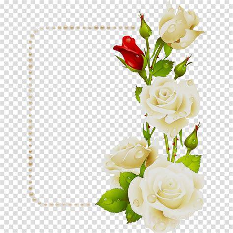 gambar bingkai foto bunga mawar kumpulan gambar