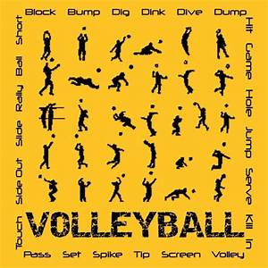 Volleyball Positions   http://volleybal-training.com ...