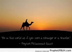 Abdullah ibn Um... Abdullah Ibn Umar Quotes