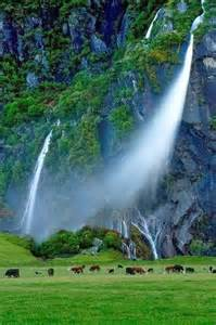 Waterfall Cliffs New Zealand