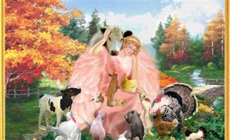 angels animals excerpt  angels  africa   women
