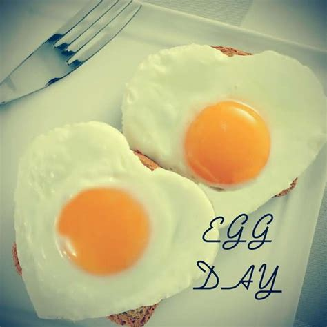 world egg day  heart shaped eggs love picture funnyexpo