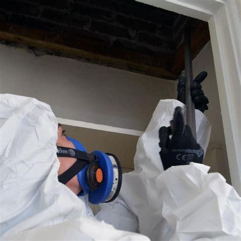 asbestos removal sydney   kelly building