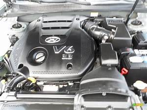 2009 Hyundai Sonata Limited V6 Engine Photos