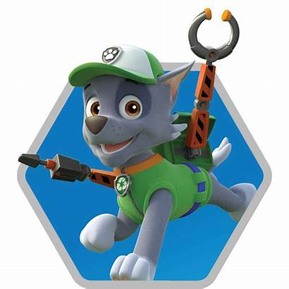 Paw Patrol Rocky Rescue Race Characters Character