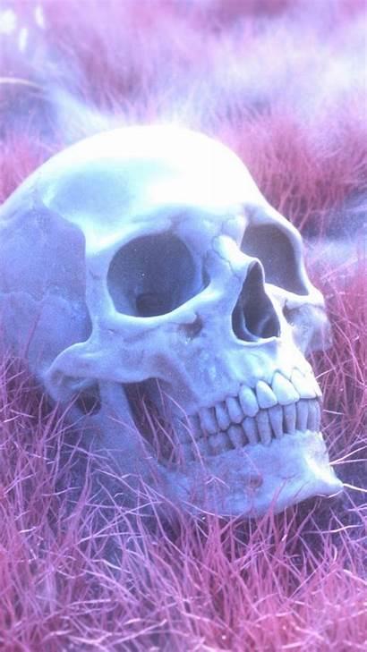 Pink Skeleton Skull Grass Wallpapers Desktop Background