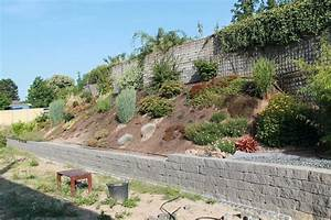 Hang Bepflanzen Bodendecker : empfehlungen f r hangbepflanzung gesucht ~ Lizthompson.info Haus und Dekorationen