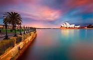 Best Sydney Fan Photos of 2013, Bondi, Coogee and Cronulla