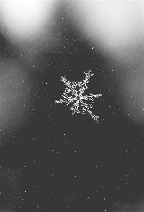 Aesthetic Winter Wallpaper by Snowflake Aesthetic Search Phone
