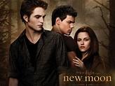 Twilight New Moon Interviews: Robert Pattinson, Kristen ...
