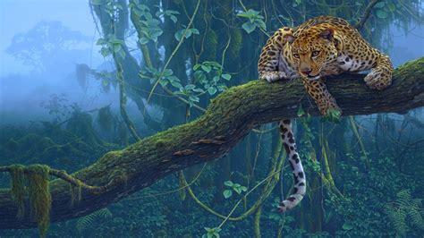 Tropical Animal Wallpaper - 壁紙 熱帯の動物 ジャガー プレデター 木 1920x1200 hd 無料のデスクトップの背景 画像