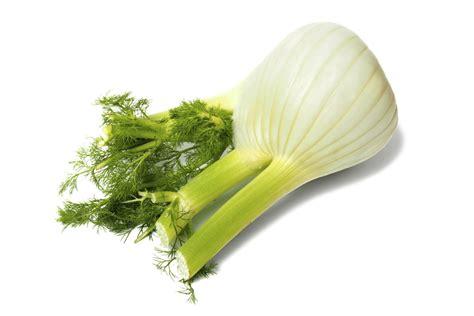 utilisation du curcuma en cuisine atouts et utilisation du fenouil bulbeux sur la santé et