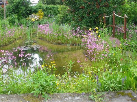 Wohnung Mit Garten Vöcklabruck by Wilde Blumen Im Garten V 246 Cklabruck