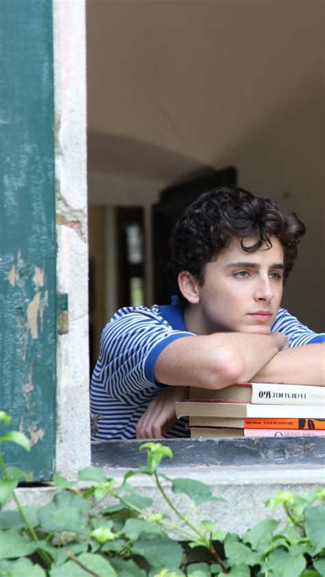Wallpaper Call Me by Your Name, Timothee Chalamet, 5k ...