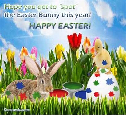 Easter Happy Bunny Greetings Ecards 123 Cards