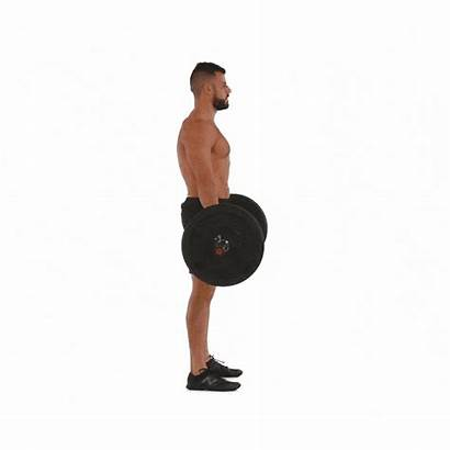 Deadlift Workouts Muscle Conventional Mass Exercises Barbell