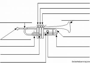 Label The Trumpet Printout
