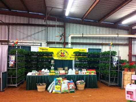 home and garden collin county feed and seed store